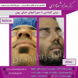 Dr-shahrjerdi25
