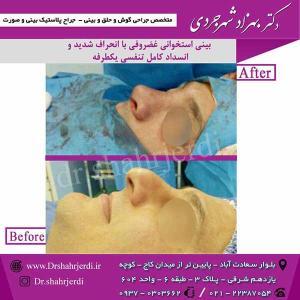 Dr-shahrjerdi47
